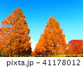 秋の舎人公園(東京都足立区)の風景 41178012