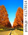 秋の舎人公園(東京都足立区)の風景 41178014