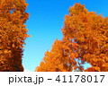 秋の舎人公園(東京都足立区)の風景 41178017