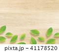 葉 木目 植物のイラスト 41178520