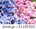 あじさいとカタツムリ・梅雨イメージ 41185402
