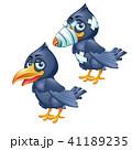 ベクトル 鳥 カラスのイラスト 41189235
