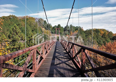 大自然の中の吊り橋 41190905