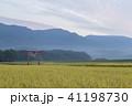 田園風景 41198730