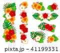 花 ハイビスカス トロピカルのイラスト 41199331