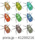 昆虫 カナブン 甲虫のイラスト 41200216