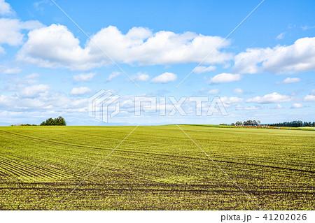 十勝平野の風景 41202026