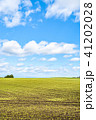 十勝平野 十勝 畑の写真 41202028