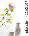 ヤエザクラ 桜 八重咲きの写真 41202197