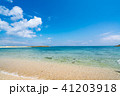 【沖縄県】ビーチイメージ 41203918