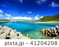 沖縄 慶良間諸島 海の写真 41204208