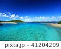 沖縄 慶良間諸島 海の写真 41204209