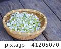 カゴいっぱいのドクダミの花 41205070