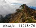 山 秋 赤岳の写真 41213470