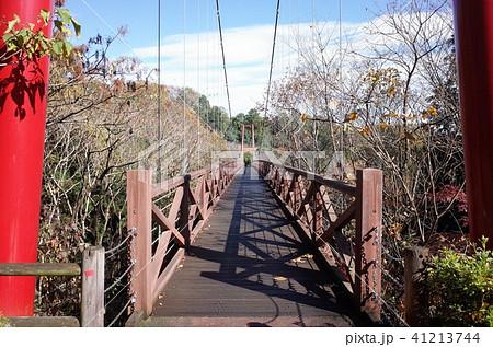 大自然の赤い吊り橋 41213744
