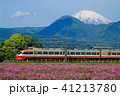 レンゲソウと富士山 41213780