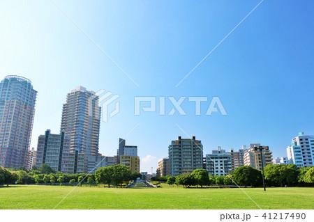 朝の青空と綺麗なマンション街の風景 41217490
