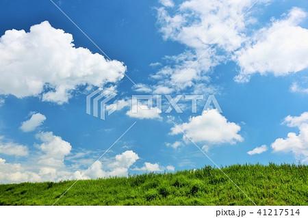 爽やかな夏の青空と草原 41217514