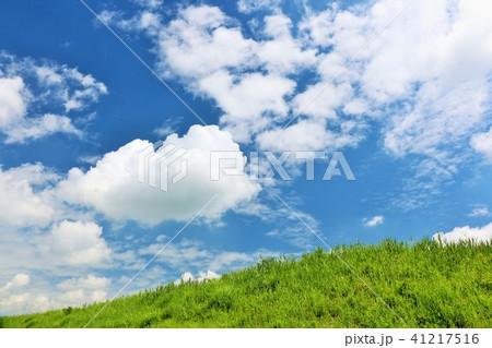 爽やかな夏の青空と草原 41217516