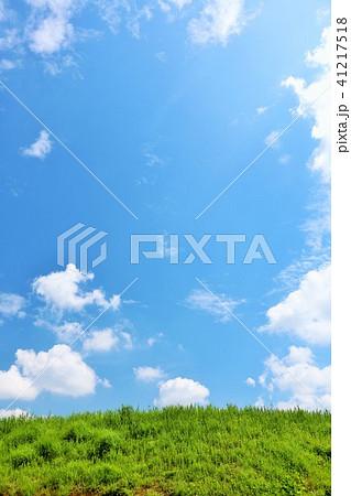 爽やかな夏の青空と草原 41217518
