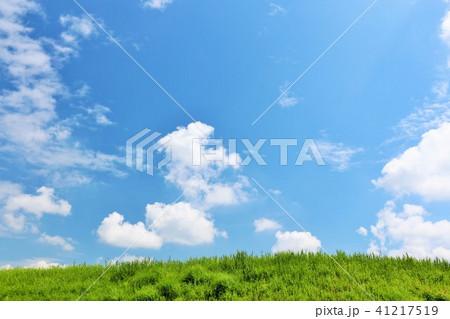 爽やかな夏の青空と草原 41217519