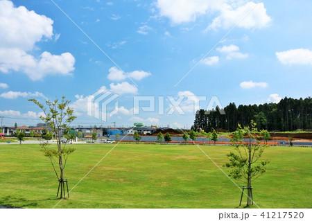 爽やかな青空と街の公園 41217520