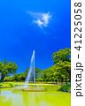 代々木公園 公園 新緑の写真 41225058