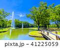 代々木公園 公園 新緑の写真 41225059