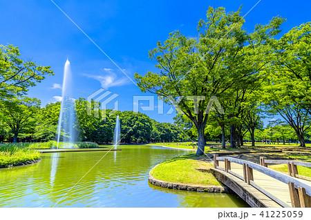東京 春の代々木公園 41225059