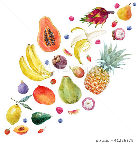 Watercolor exotic fruits composition 41226379