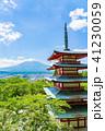 新倉山浅間公園 春 五重塔の写真 41230059