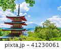 新倉山浅間公園 春 五重塔の写真 41230061