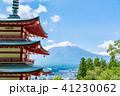 新倉山浅間公園 春 五重塔の写真 41230062