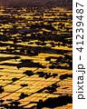 《富山県》水鏡の水田・砺波平野の朝景《医王山より》 41239487