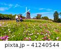 花博記念公園の風車とコスモス 41240544