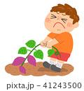 芋ほり 男の子 41243500