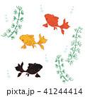 3色の金魚 41244414