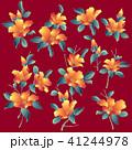 日本的な椿, 41244978