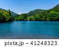 四万ブルー 自然 新緑の写真 41248323