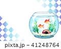 金魚鉢ハガキ 41248764