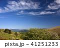 霧ヶ峰 初夏 青空の写真 41251233