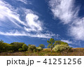 霧ヶ峰 初夏 青空の写真 41251256