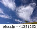 霧ヶ峰 初夏 青空の写真 41251262
