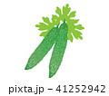 ゴーヤ 野菜 農作物のイラスト 41252942