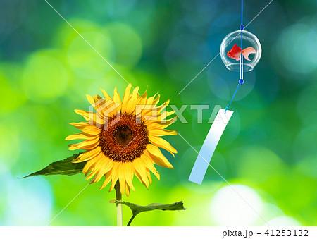 風鈴と向日葵 41253132