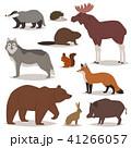 動物 ベクトル ワイルドのイラスト 41266057