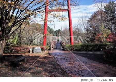 山の大自然の中の赤い吊り橋を歩く 41266105