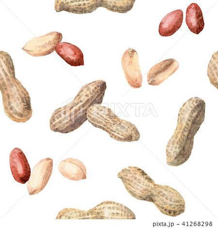 水彩で描いた殻付き落花生と薄皮ピーナッツの壁紙 41268298