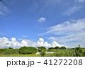 青空 雲 初夏の写真 41272208