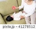 赤ちゃん 子供 おもちゃの写真 41278512